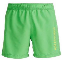 Chiemsee ILARIO Szorty kąpielowe classic green