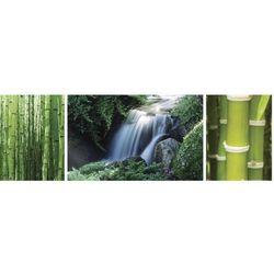Galeria Chiny - las bambusowy i wodospad - tryptyk - plakat (5028486131471)