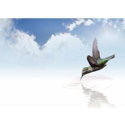 Tablica suchościeralna 211 ptaszek marki Wally - piękno dekoracji