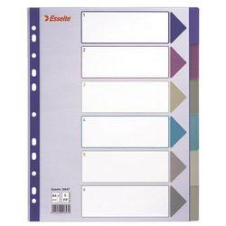 Esselte Przekładki indeksujące  multicolor maxi a4+/6kart, 20647