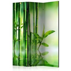 Artgeist Parawan 3-częściowy - bambusowy gaj [room dividers]