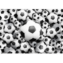Fototapeta Piłka Nożna 3380