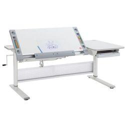 Ergodesk Biurko regulowane comf-pro premium desk