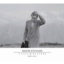 DAVID SYLVIAN - A VICTIM OF STARS 1981-2011 (STANDARD) - Album 2 płytowy (CD) (metal)