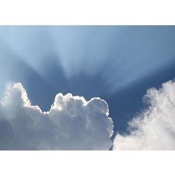 Wally - piękno dekoracji Tablica magnetyczna suchościeralna chmury 228