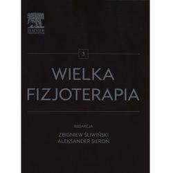 Wielka fizjoterapia Tom 3 - Wysyłka od 3,99 - porównuj ceny z wysyłką, książka z ISBN: 9788376099620