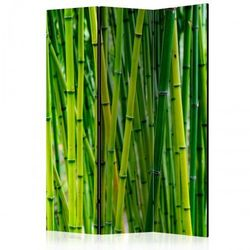 Parawan 3-częściowy - Bambusowy las [Room Dividers]