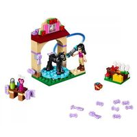 Lego FRIENDS Kąpiel.źrebaka 41123