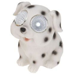 Progarden Lampa solarna 10 cm pies biały - biały