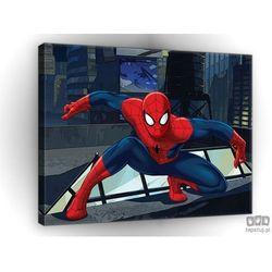Obraz Spider Man na dachu PPD524