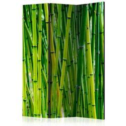 Artgeist Parawan 3-częściowy - bambusowy las [parawan]