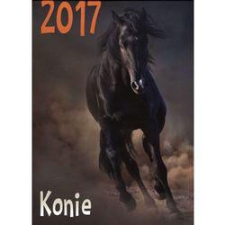 Kalendarz 2017 Ścienny - Konie AWM (9788380361058)