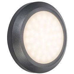 Lampa ścienna Daystar ciemnoszara - produkt dostępny w lampyiswiatlo.pl
