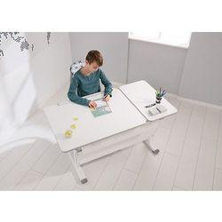 Paidi Regulowane biurko dziecięce z pochylanym blatem diego gt