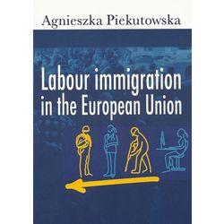 Labour immigration in the European Union, pozycja wydana w roku: 2012