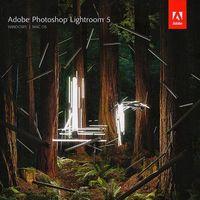 Adobe Photoshop Lightroom 5.4 ENG Win/Mac – wersja dla uczniów i nauczycieli - produkt z kategorii- Program