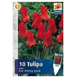Tulipan Red Riding Hood (8711148314332)