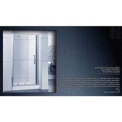 DRZWI PRYSZNICOWE AXISS GLASS AXP100WS 1000mm (drzwi prysznicowe)