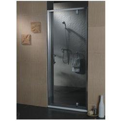 drzwi 80cm, chrom, transparentne s-80d tr wyprodukowany przez Omnires