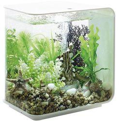 Akwarium akrylowe Oase biOrb FLOW 15 LED weiß 45915, z Podświetleniem LED, 15 l, (DxSxW) 208 x 300 x 315 mm, biOrb FLOW 15 LED weiß