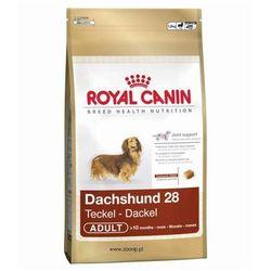 Royal canin dachshund 28 adult 1,5kg, marki Royal canin breed