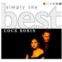 ROBIN COCK - SIMPLY THE BEST (CD)