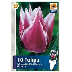 Tulipany Claudia (8711148314066)