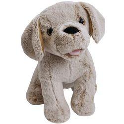 Piesek Fado, zabawka interaktywna