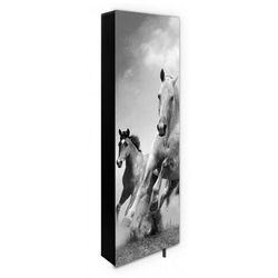 Obrotowa szafa na buty DAF z nadrukiem konie, MS-0127