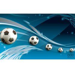 Fototapeta piłka nożna 3385 marki Consalnet