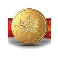 8szt. x 1g Kanadyjski Liść Klonu - Zestaw Złotych Monet