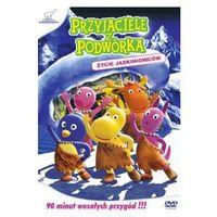 Przyjaciele z Podwórka -życie Jaskiniowców (DVD) - GM Distribution