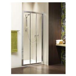 Drzwi wnękowe 100 Treviso DW Radaway (32323-01-06N) (drzwi prysznicowe)
