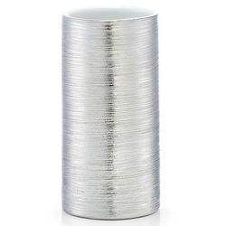 Srebrny pojemnik na szczoteczki do mycia zębów, kubek na szczoteczki, kubek łazienkowy, przybory do łazienki, pojemnik do łazienki, ZELLER (4003368187464)