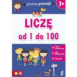 LICZĘ OD 1 DO 100 GŁÓWKA PRACUJE (ISBN 9788378957072)