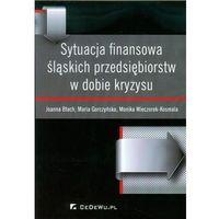 Sytuacja finansowa śląskich przedsiębiorstw w dobie kryzysu (9788375564839)
