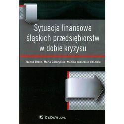 Sytuacja finansowa śląskich przedsiębiorstw w dobie kryzysu, pozycja wydawnicza