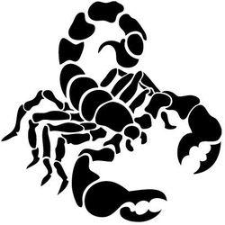 Szabloneria Szablon malarski z tworzywa, wielorazowy, wzór fauna 27 - skorpion