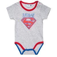 DC COMICS SUPERMAN Body light gray melange/princess blue/racing red