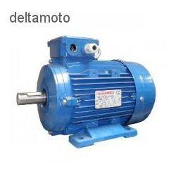 Silnik elektryczny, 2,2 kw 2800rpm wyprodukowany przez Valkenpower