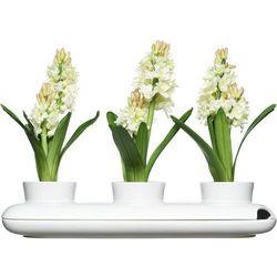 Potrójny wazon na zioła Trio Herbs & Spices (7394150152744)