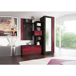 Garderoba zac pojemna z lustrem i drążkiem marki Meblotrans
