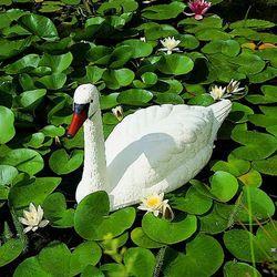 plastikowa ozdoba do ogrodowego oczka wodnego – biały łabędź, marki Ubbink