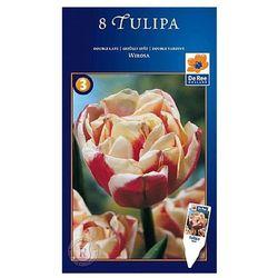 Tulipan Wirosa