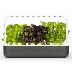 Inteligentna donica Click and Grow Smart Garden 9 dark grey, SG9GR