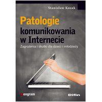 PATOLOGIE KOMUNIKOWANIA W INTERNECIE (oprawa miękka) (Książka) (9788376413884)