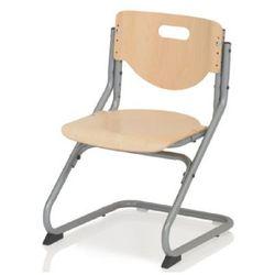 krzesło chair plus buk/kolor srebrny 6725-017 marki Kettler