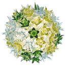 Kartell Plafon bloom miętowy (8058967093971)