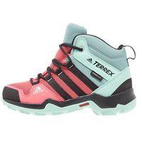 adidas Performance TERREX AX2R CP Buty trekkingowe tactile pink/core black/easy green, IJP74