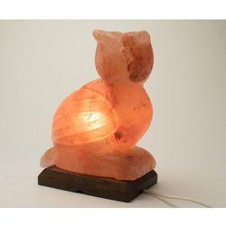 Zdrowie natury Lampa solna sowa